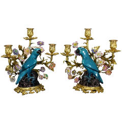 Pair of French Gilt Bronze and Chinese Ceramic Parrot Candelabras
