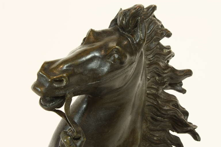 Pair of French Bronze Marly Horses 9