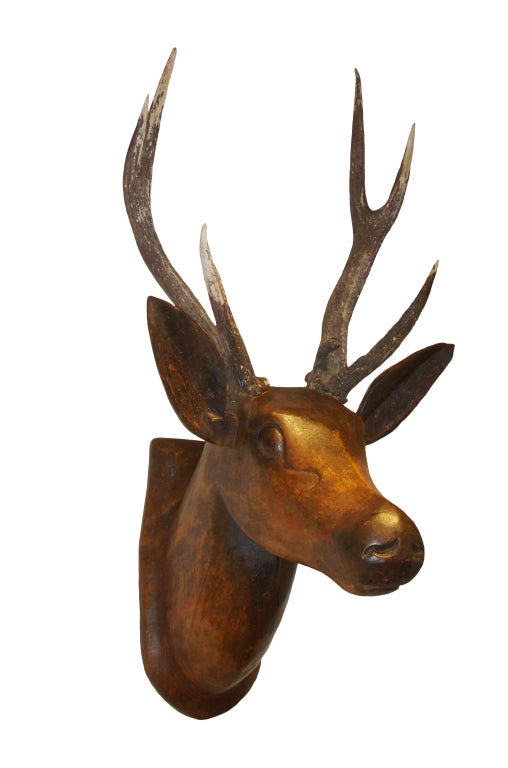 19th Century French Deer Head image 3