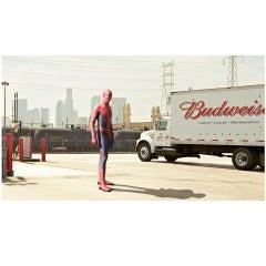 """""""Spiderman"""" by David Scheinmann, England, 2010"""