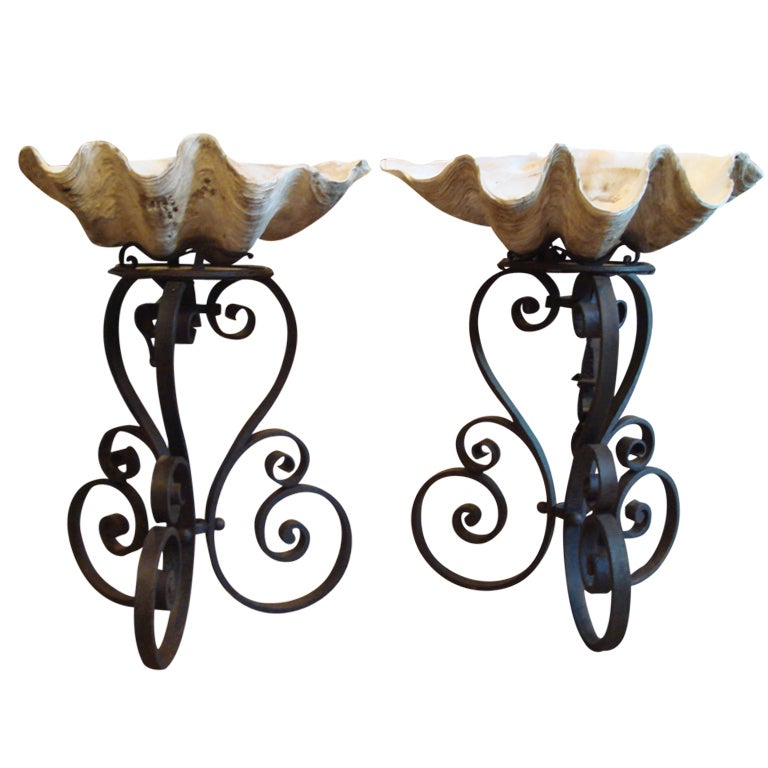 Pair of Gigantic Clam Shells on Metal Pedestals