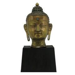 Bronze Buddha Bust On Black Lacquered Plinth Base