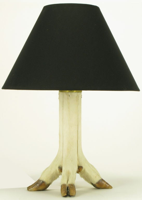 Deer Hoof Taxidermy Four Legged Table Lamp At 1stdibs