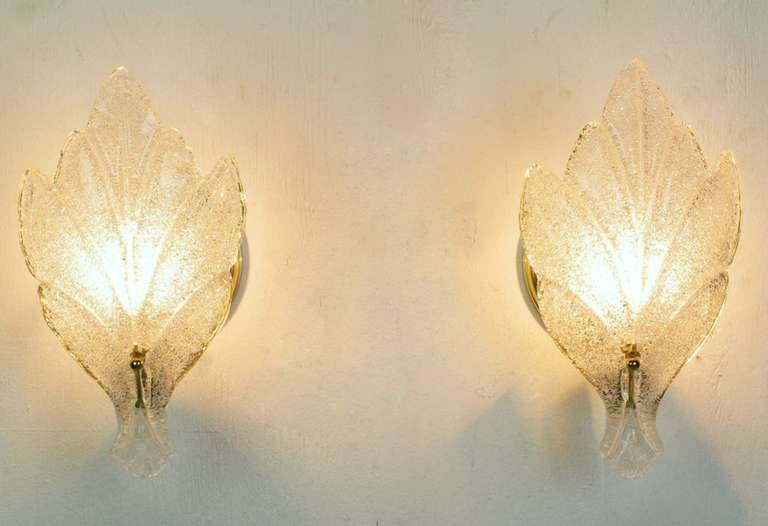 Pair of Murano glass wall sconces consisting of a single stylized maple leaf and a circular brass wall plate with a single socket and mount. Similar in style, quality and size to sconces by Barovier & Toso that feature Murano glass lead