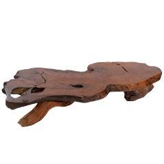 "Massive 89"" Redwood Burl Coffee Table"