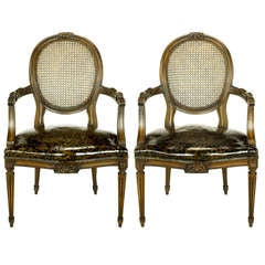 Pair of Louis XVI Mahogany and Cane Armchairs with Tortoiseshell Leather