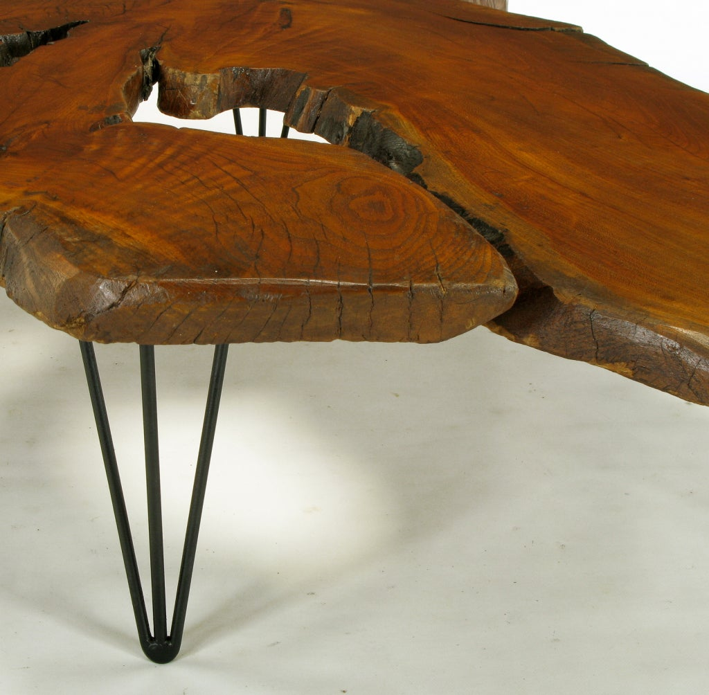 Vintage Burl Wood Slab Coffee Table At 1stdibs: Live Edge Red Wood Burl Coffee Table With Hair Pin Legs At
