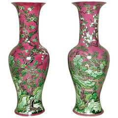 Pair of Fuschia and Celadon Porcelain Chinese Floor Vases