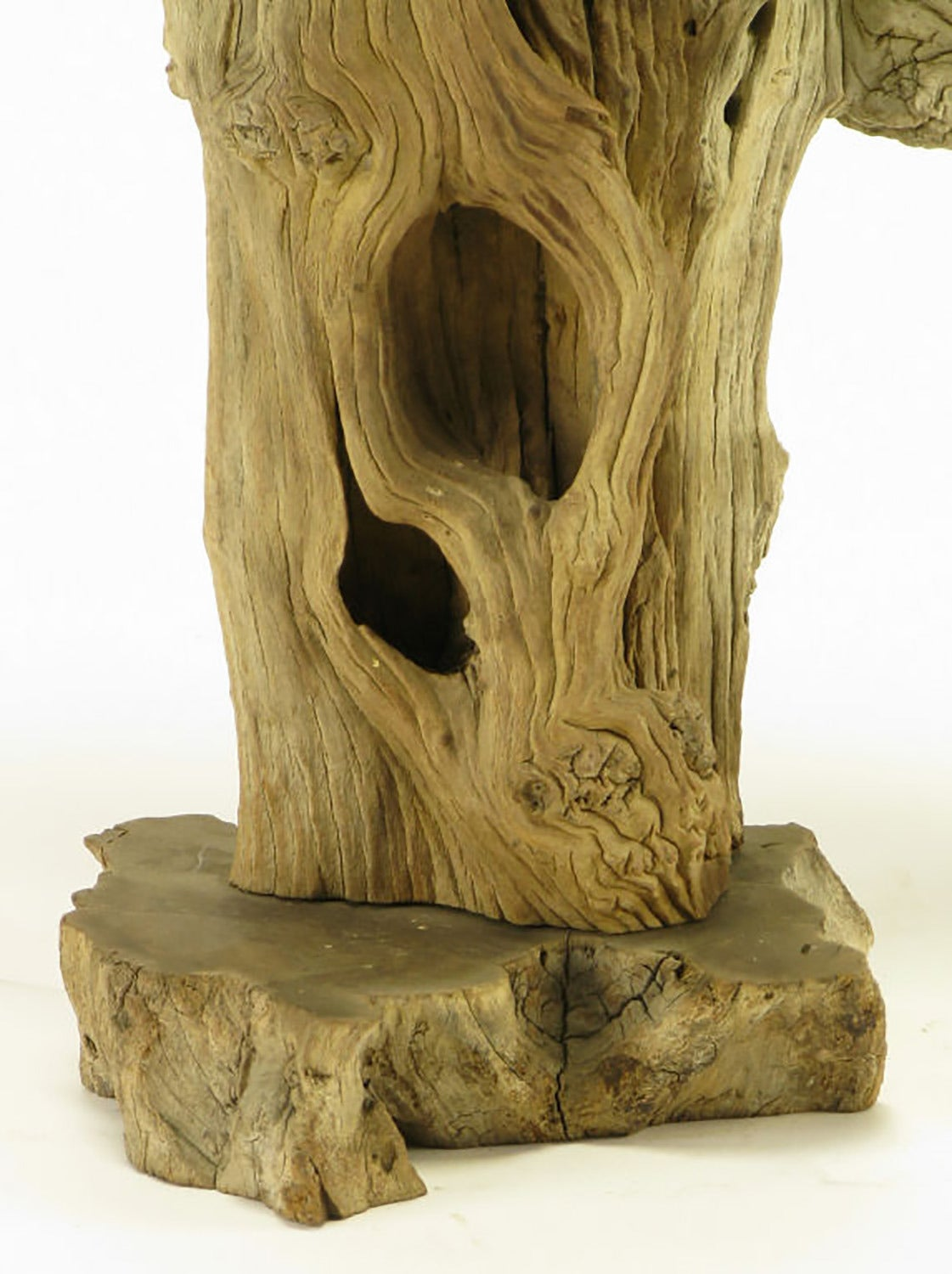 Brass Driftwood Table Lamp with Live Edge Wood Base For Sale