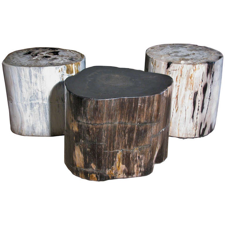 petrified wood stump tables set of 3 at 1stdibs