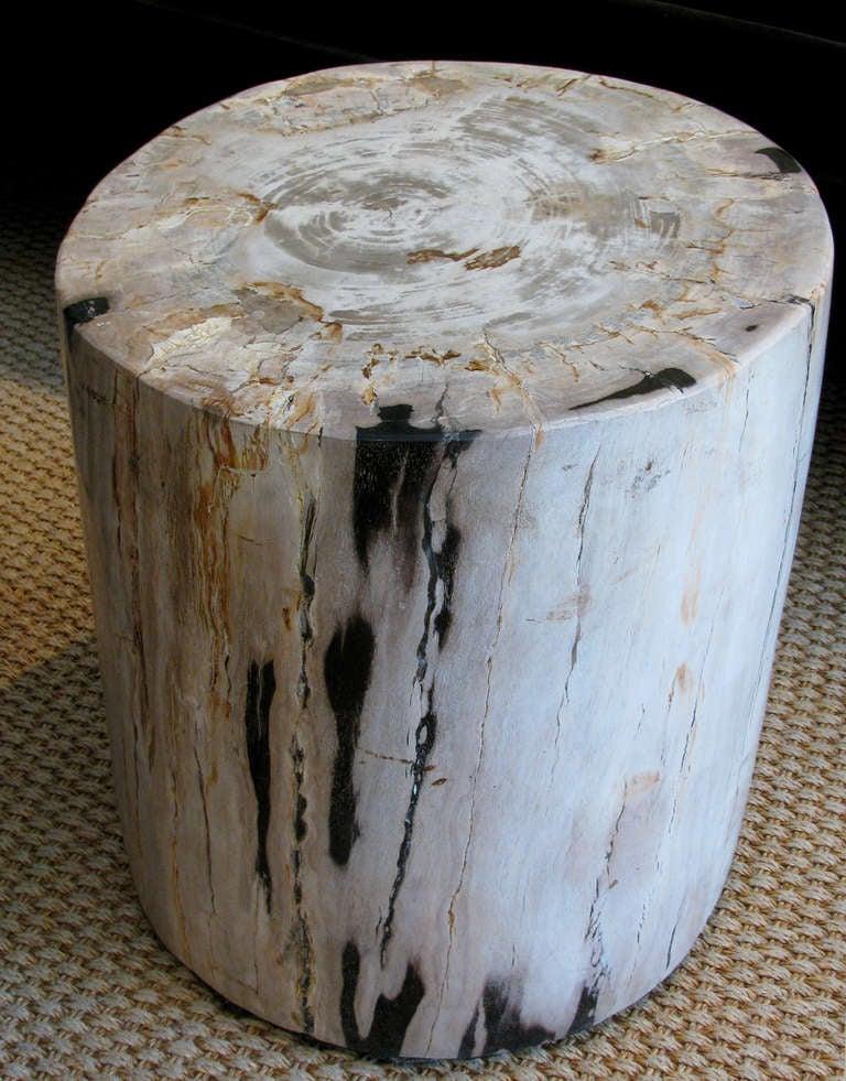 Petrified Wood Stump Tables Set of 3 at 1stdibs