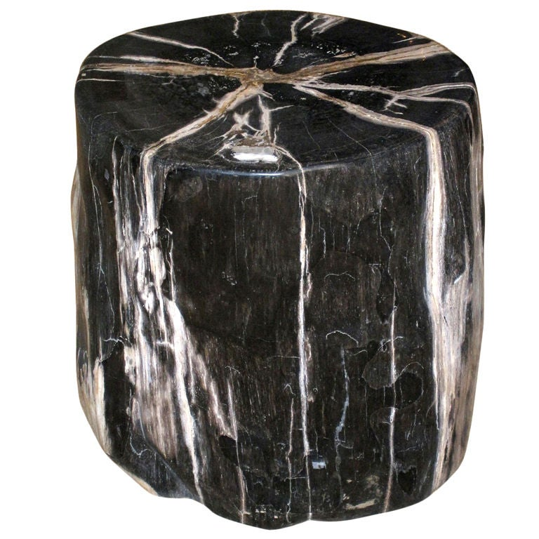 A Petrified Wood Trunk Table At 1stdibs