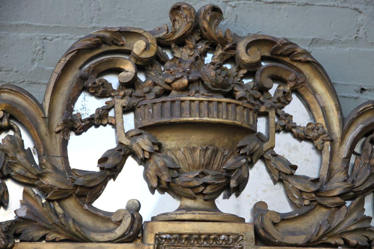 19th Century Italian Carved Giltwood Mirror 6