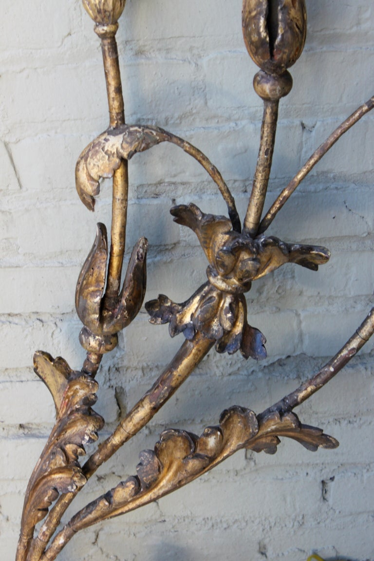 Pair of 19th C. Italian Gilt Metal and Wood Sconces at 1stdibs