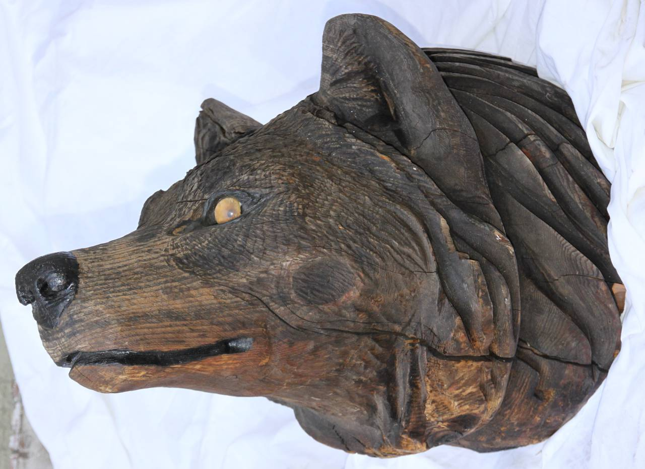 Rustic carved wood wolf head with glass eyes at stdibs