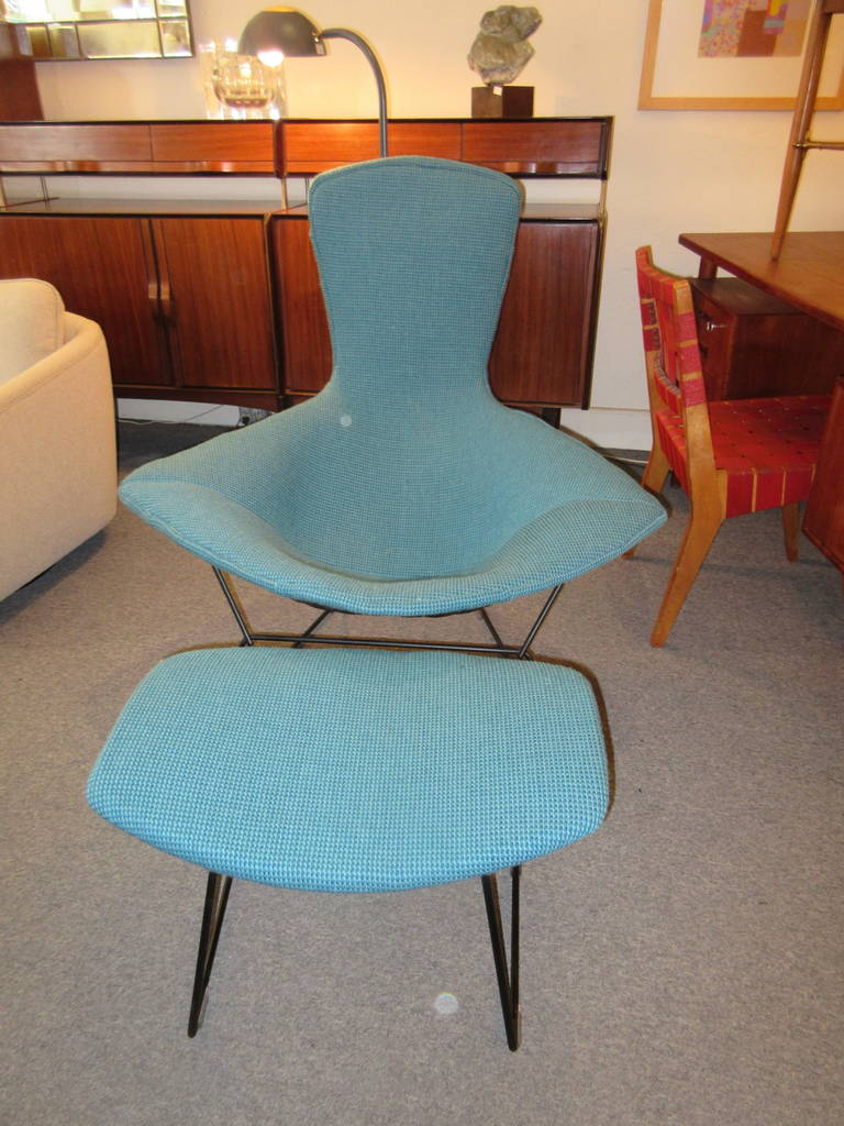 American Bertoia Bird Chair and Ottoman for Knoll in Cato Fabric