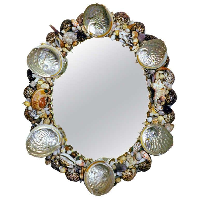 Shell Mirror 1