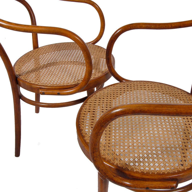 Vintage bent plywood thonet chair - Set Of Ten No 9 Chairs By Thonet At 1stdibs