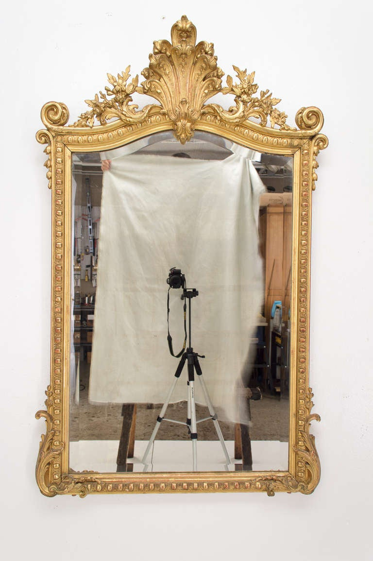 19th C. French  Louis XV Style Gilded MIrror 2