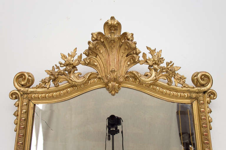 19th C. French  Louis XV Style Gilded MIrror 4