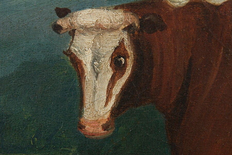 FOLK PAINTING OF A PRIZE COW, ca 1880:  Folk painting of a prize cow with lots of character, ca 1880, English but with a less European appearance than some; married to a wonderful, water gilded, American molding that dates to the period between