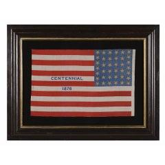 """Rare 38 Star Parade Flag With """"1876 Centennial"""" Advertising"""