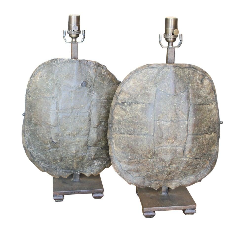 pair of old tortoise shell lamp bases at 1stdibs. Black Bedroom Furniture Sets. Home Design Ideas