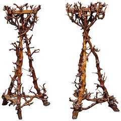 Pair of Branch Pedestals