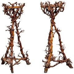 Pair of Branch Pedestals