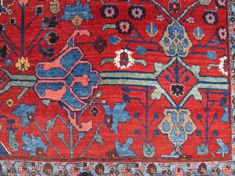 Late 19th Century Room Sized Red Bidjar Carpet 5