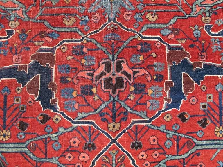Late 19th Century Room Sized Red Bidjar Carpet 4