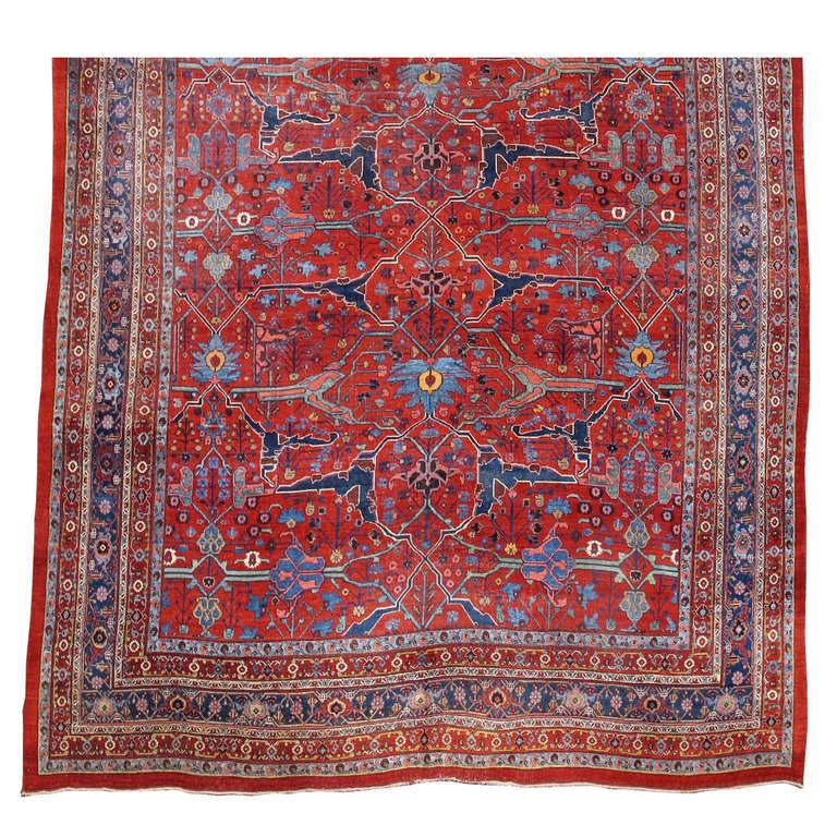 Room Sized Bidjar Carpet 1