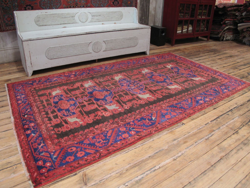 Striking design featuring carnations in the border. Dramatic color palette. Soft, luminous wool.