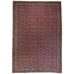 Pink Kayseri Carpet