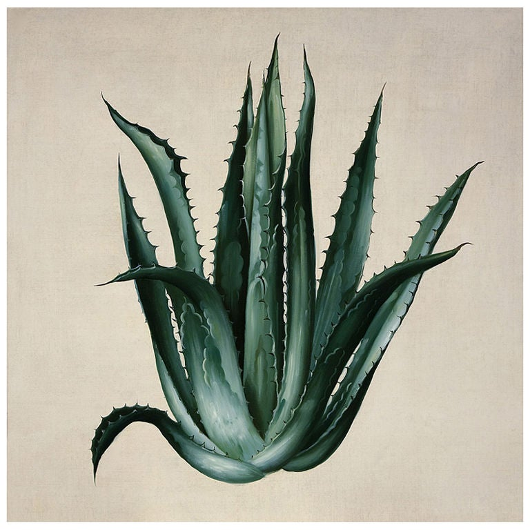 green agave nathan turner for dutch touch at 1stdibs. Black Bedroom Furniture Sets. Home Design Ideas