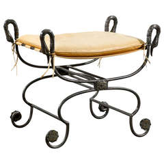 Directoire Style Bench in Iron With Bronze Mounts and Bronze Swan Head Motif In the Style of Jansen