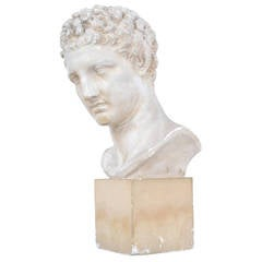 French 19th Century Bust of Hermes in Plaster