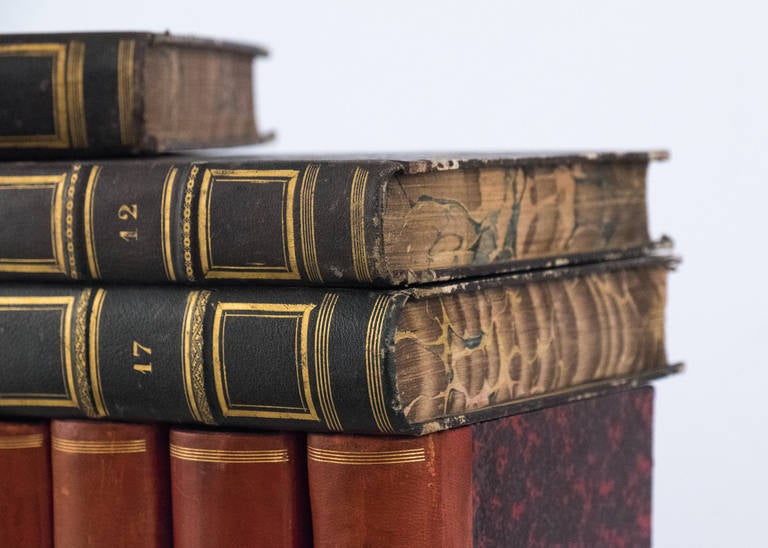 French Antique Leather Bound  Books For Sale 3