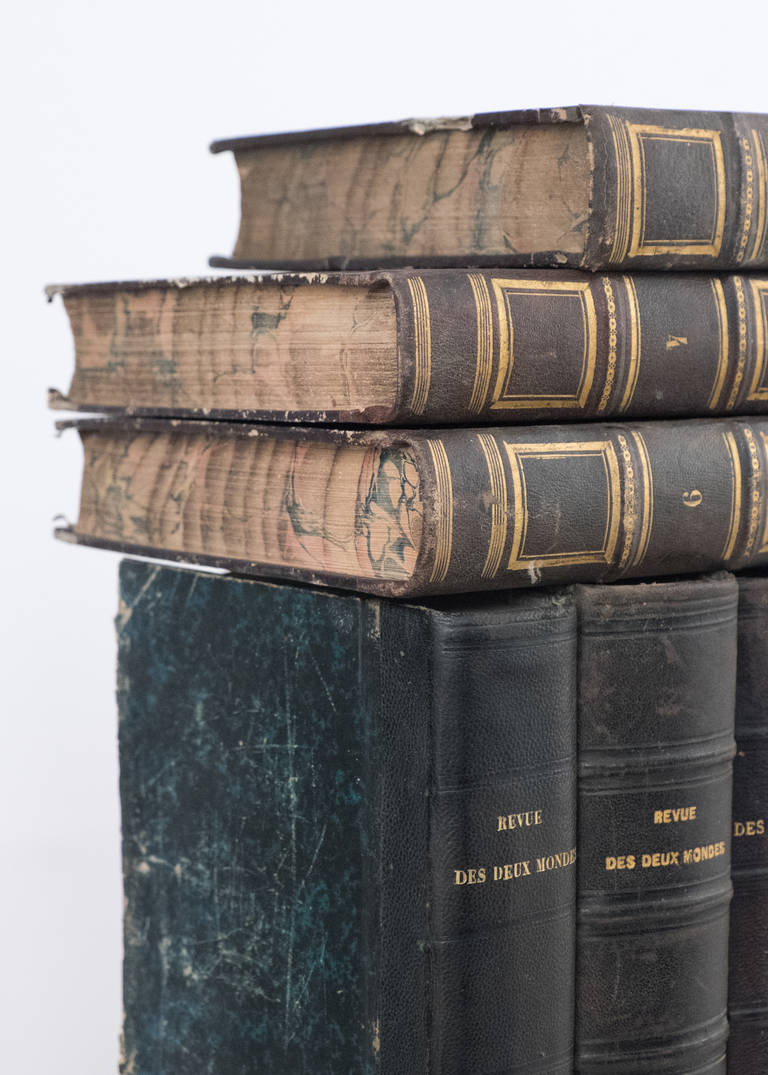 French Antique Leather Bound  Books For Sale 4