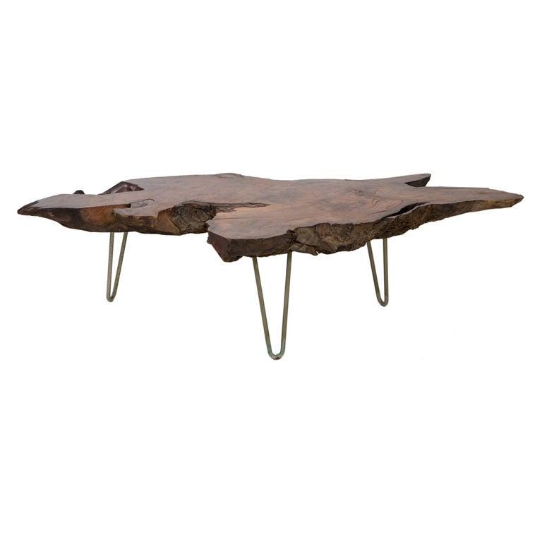 Mid Century Modern Tree Slab Coffee Table For Sale At 1stdibs: Mid-Century Slab Coffee Table At 1stdibs