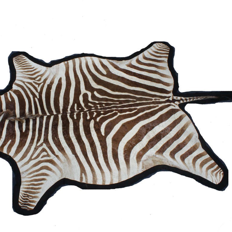 Large Well Marked Burchell Zebra Hide On Felt Rug At 1stdibs