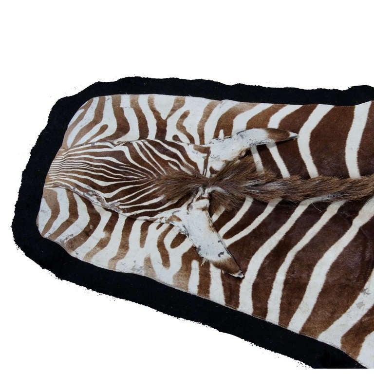 Zebra Rug Large: Large Well Marked Burchell Zebra Hide On Felt Rug At 1stdibs