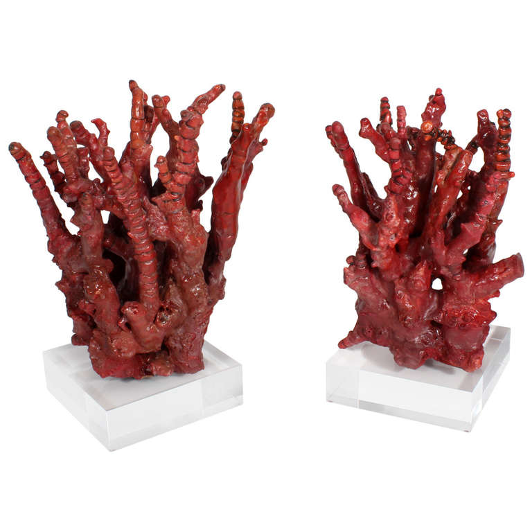 Two Chinese Bamboo Red Coral Trees at 1stdibs