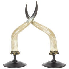 Mid-Century Pair of Large and Dramatic Polished Horns on Mounts