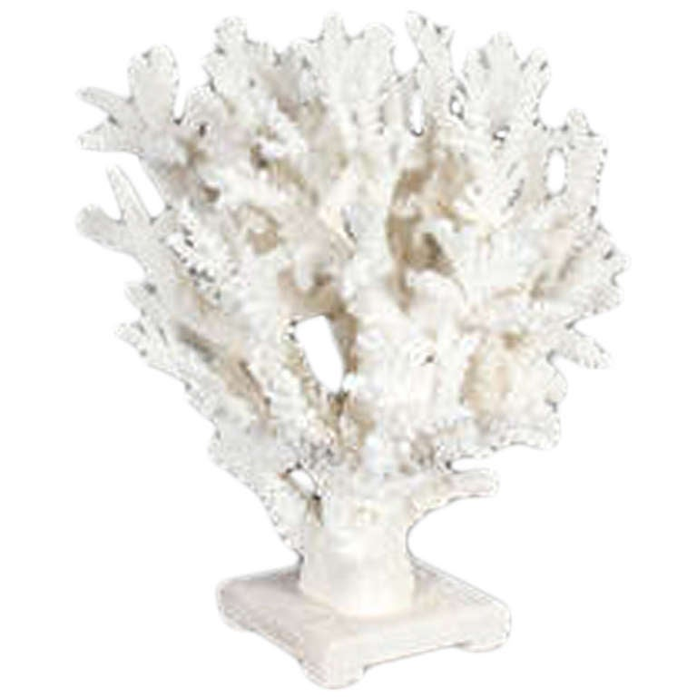 Sculptural large white coral centerpiece at stdibs