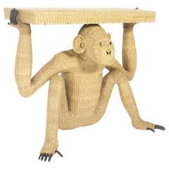 Mario Torres Chimpanzee or Monkey Console