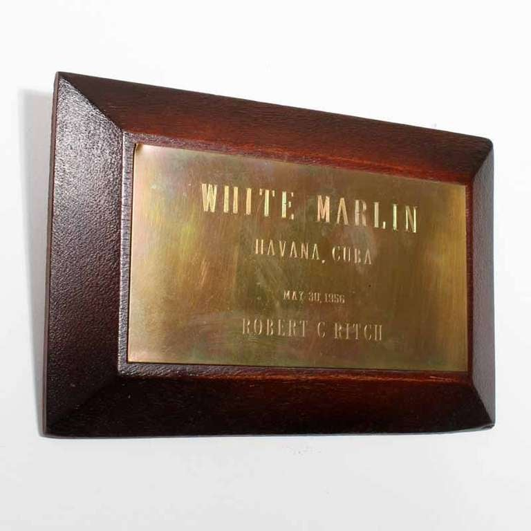 Mid 20th C Skin Mount White Marlin Fish, with Brass Plaque ...