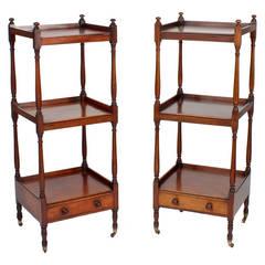 Pair of English 19th Century Mahogany Etageres or Set of Shelves