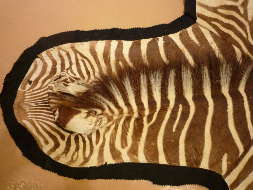 Zebra Hide Rug On Felt At 1stdibs