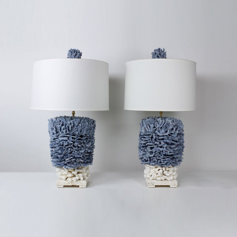 Pair Of Blue And Elkhorn Pacific Coral Lamps At 1stdibs